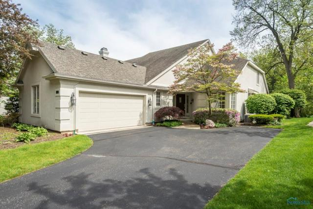 6045 Shadow Lake, Toledo, OH 43623 (MLS #6039874) :: RE/MAX Masters