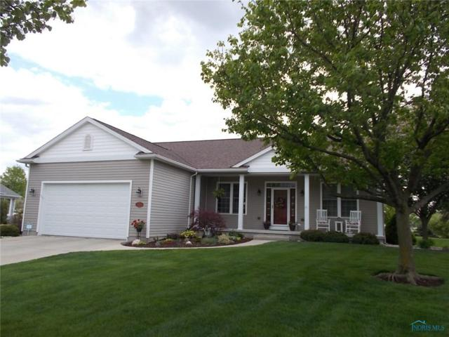 1183 Apache, Wauseon, OH 43567 (MLS #6039913) :: RE/MAX Masters