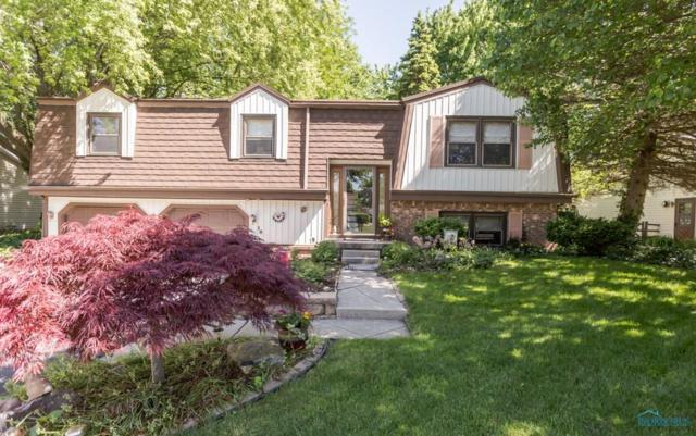 16 Naugatuck, Waterville, OH 43566 (MLS #6040556) :: Key Realty