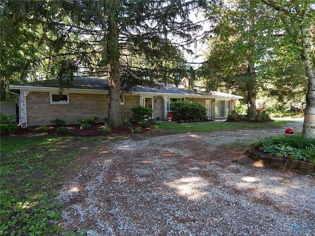 1205 County Road D, Swanton, OH 43558 (MLS #6041293) :: Key Realty