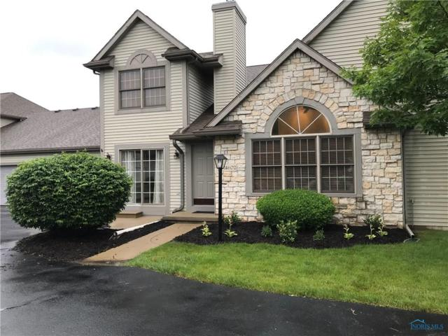 14602 Dexter Falls, Perrysburg, OH 43551 (MLS #6041354) :: Key Realty
