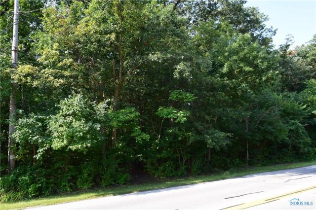 0 Hill, Holland, OH 43528 (MLS #6041536) :: RE/MAX Masters