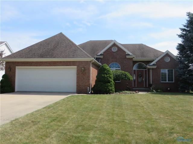 7317 Chip Shot, Waterville, OH 43566 (MLS #6043828) :: RE/MAX Masters