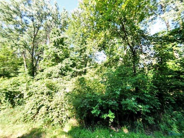 2001 N Schwamberger, Holland, OH 43528 (MLS #6046289) :: RE/MAX Masters