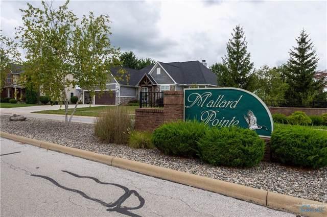 5645 Mallard Pointe, Sylvania, OH 43560 (MLS #6046436) :: RE/MAX Masters