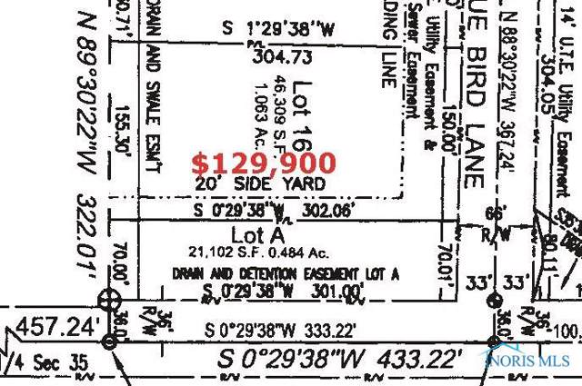 Lot 16 Witte Walk, Whitehouse, OH 43571 (MLS #6049431) :: Key Realty