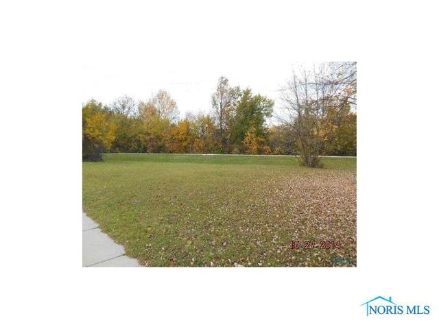 11008 Waterville, Whitehouse, OH 43571 (MLS #6053264) :: The Kinder Team