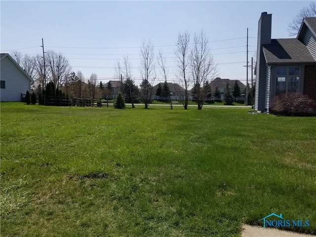 9331 Teresa, Sylvania, OH 43560 (MLS #6057445) :: Key Realty