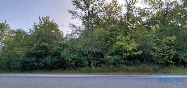 1647 S Berkey Southern, Swanton, OH 43558 (MLS #6060035) :: RE/MAX Masters