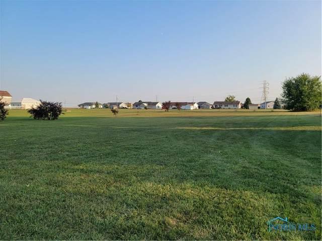 603 W Curtis, Stryker, OH 43557 (MLS #6060385) :: CCR, Realtors