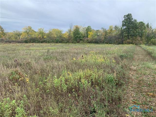 0 County Road 424, Liberty Center, OH 43532 (MLS #6060612) :: Key Realty