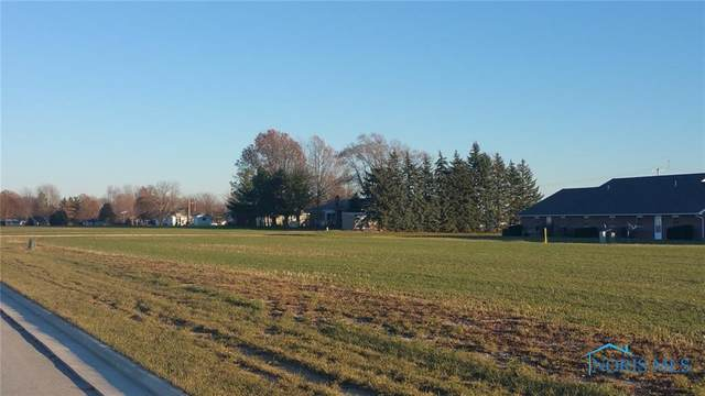 0 Summer Drive Lot #69, Carey, OH 43316 (MLS #6060706) :: Key Realty