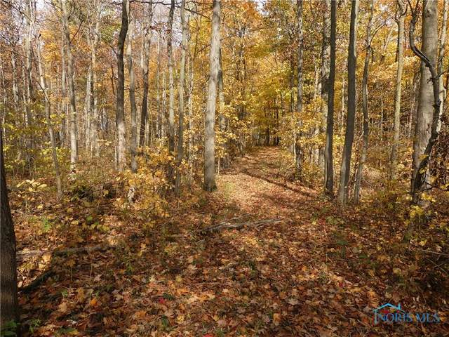 tbd County Highway 70, Forest, OH 45843 (MLS #6061824) :: Key Realty