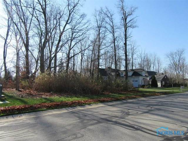 3662 Deer Creek, Maumee, OH 43537 (MLS #6068520) :: RE/MAX Masters