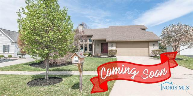 6602 Foxtail, Maumee, OH 43537 (MLS #6068880) :: CCR, Realtors