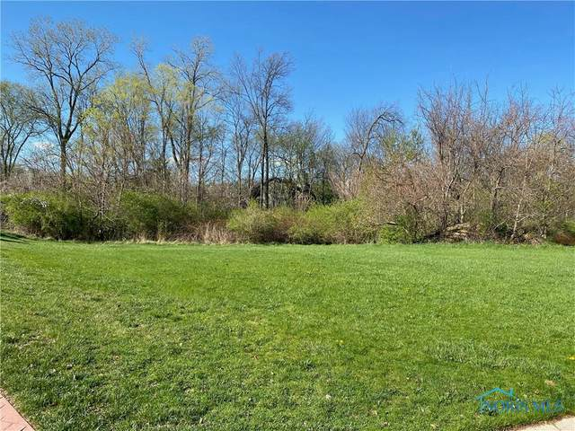 17 Stableside, Ottawa Hills, OH 43615 (MLS #6068987) :: RE/MAX Masters