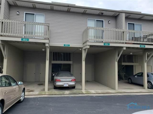 8814 W Canada Goose Court, Oak Harbor, OH 43449 (MLS #6069849) :: CCR, Realtors