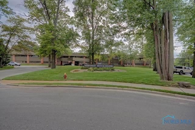 3900 Sunforest Court 1-N-2, Toledo, OH 43623 (MLS #6075288) :: Key Realty