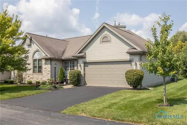 14644 Dexter Falls Road, Perrysburg, OH 43551 (MLS #6075993) :: Key Realty