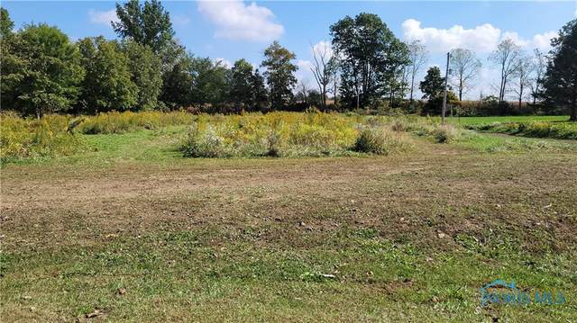 0 Township Highway 132, Nevada, OH 44849 (MLS #6078501) :: iLink Real Estate
