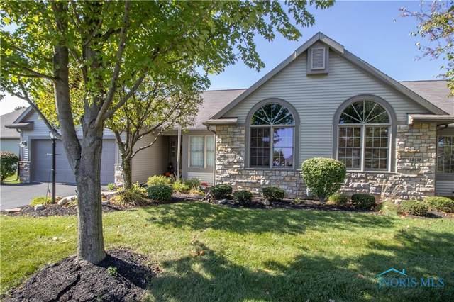 14620 Dexter Falls Road, Perrysburg, OH 43551 (MLS #6078657) :: iLink Real Estate