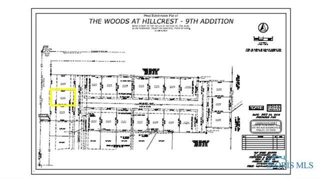 0 Bushwillow Dr Lot 155, Findlay, OH 45840 (MLS #6079044) :: CCR, Realtors