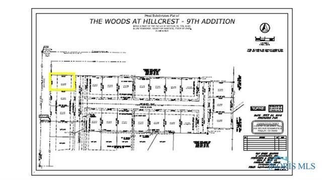 0 Bushwillow Dr Lot 156, Findlay, OH 45840 (MLS #6079046) :: CCR, Realtors