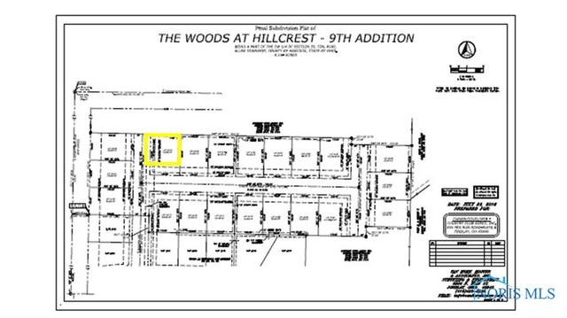 0 Bushwillow Dr Or Rock Candy Rd Lot 157, Findlay, OH 45840 (MLS #6079052) :: CCR, Realtors