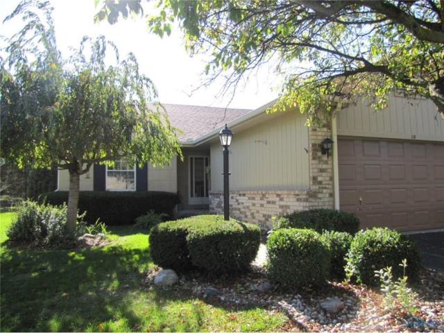 38 Homestead #38, Maumee, OH 43537 (MLS #6016667) :: RE/MAX Masters