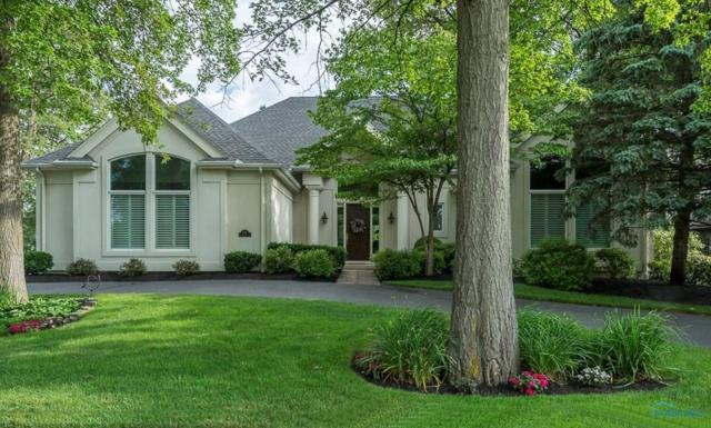 436 Pine Valley, Holland, OH 43528 (MLS #6018521) :: Key Realty