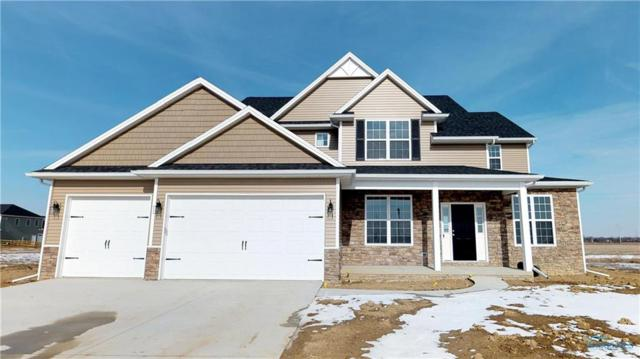 9528 Stallion, Whitehouse, OH 43571 (MLS #6019655) :: RE/MAX Masters