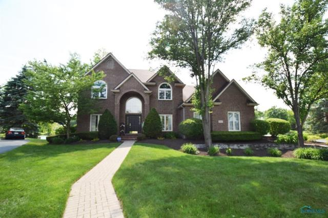 8663 Plum Hollow, Holland, OH 43528 (MLS #6025515) :: RE/MAX Masters