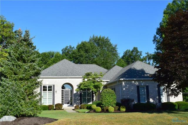 722 Lost Lakes, Holland, OH 43528 (MLS #6028048) :: RE/MAX Masters