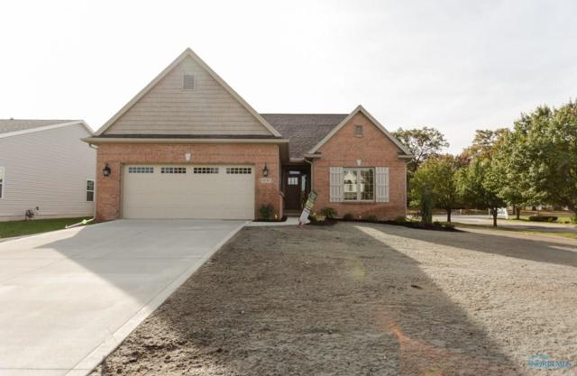 10751 Saron, Whitehouse, OH 43571 (MLS #6028396) :: Key Realty