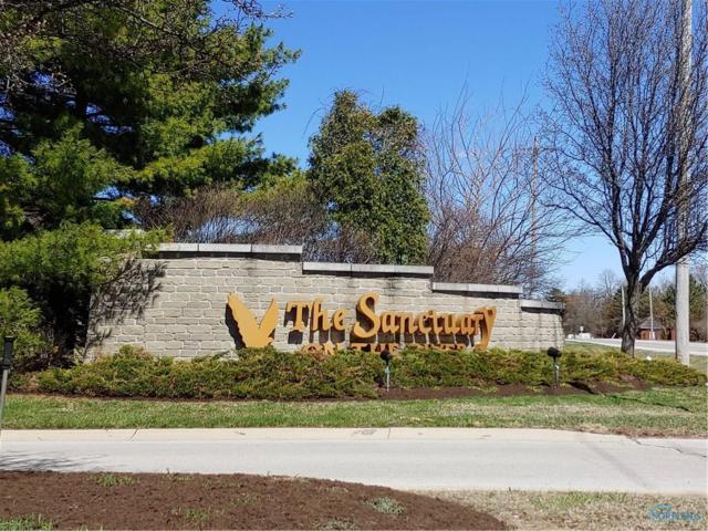 3120 Riverwood, Perrysburg, OH 43551 (MLS #6038082) :: Key Realty