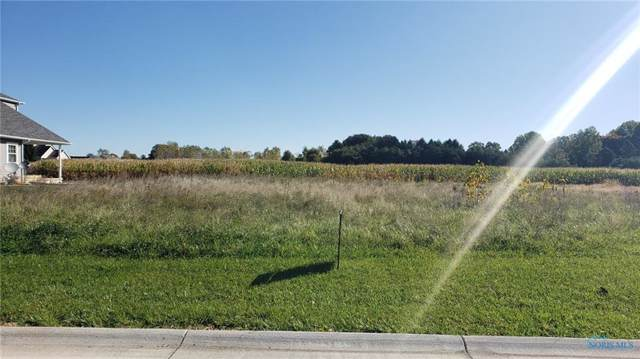 0 Lot #29 Ariel, Liberty Center, OH 43532 (MLS #6046614) :: The Kinder Team