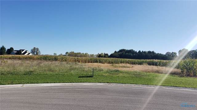 0 Lot #30 Ariel, Liberty Center, OH 43532 (MLS #6046616) :: Key Realty