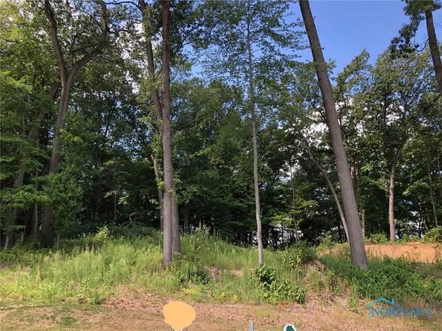 11136 Preserve, Whitehouse, OH 43571 (MLS #6051494) :: The Kinder Team