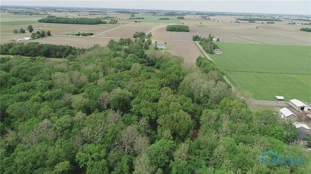0 County Road 4 - Parcel B, Swanton, OH 43558 (MLS #6061480) :: The Kinder Team