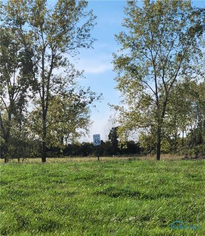 2370 S Harbor Bay - Lot 59 Drive, Lakeside Marblehead, OH 43440 (MLS #6078643) :: iLink Real Estate