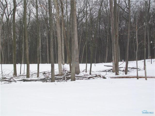 Lot 13 Preserve Boulevard, Whitehouse, OH 43571 (MLS #6020856) :: RE/MAX Masters