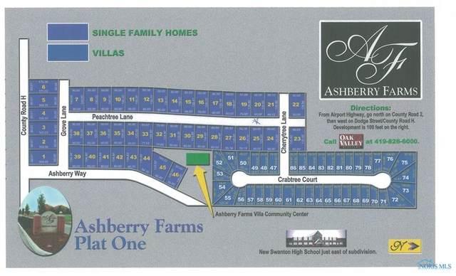 103 Ashberry Way, Swanton, OH 43558 (MLS #6022837) :: iLink Real Estate