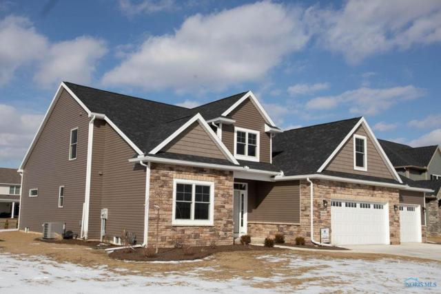 9550 Rockingham, Whitehouse, OH 43571 (MLS #6029871) :: RE/MAX Masters