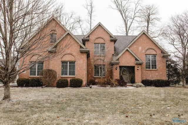 7920 Chestnut Ridge, Maumee, OH 43537 (MLS #6036476) :: Key Realty