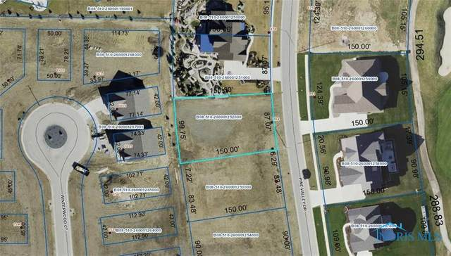884 Pine Valley Drive, Bowling Green, OH 43402 (MLS #6044958) :: CCR, Realtors