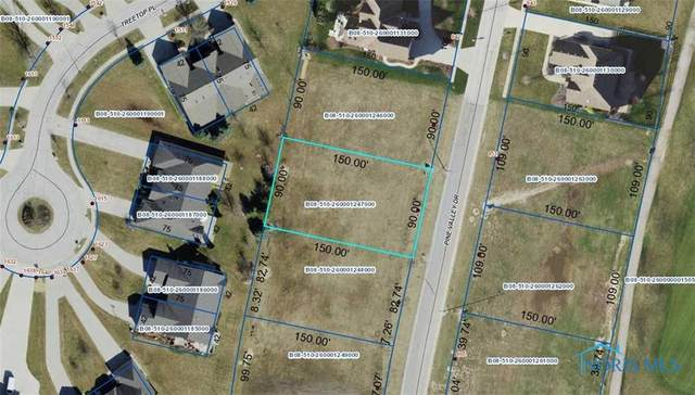 854 Pine Valley Drive, Bowling Green, OH 43402 (MLS #6044970) :: CCR, Realtors
