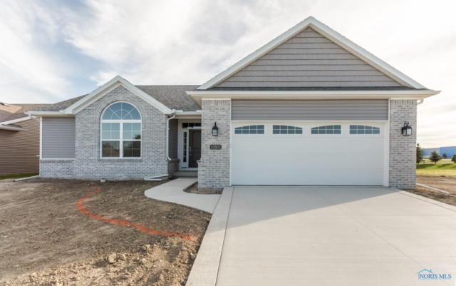 10301 Blue Ridge, Whitehouse, OH 43571 (MLS #6029311) :: RE/MAX Masters