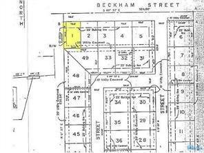 635 Beckham, Napoleon, OH 43545 (MLS #6026422) :: RE/MAX Masters
