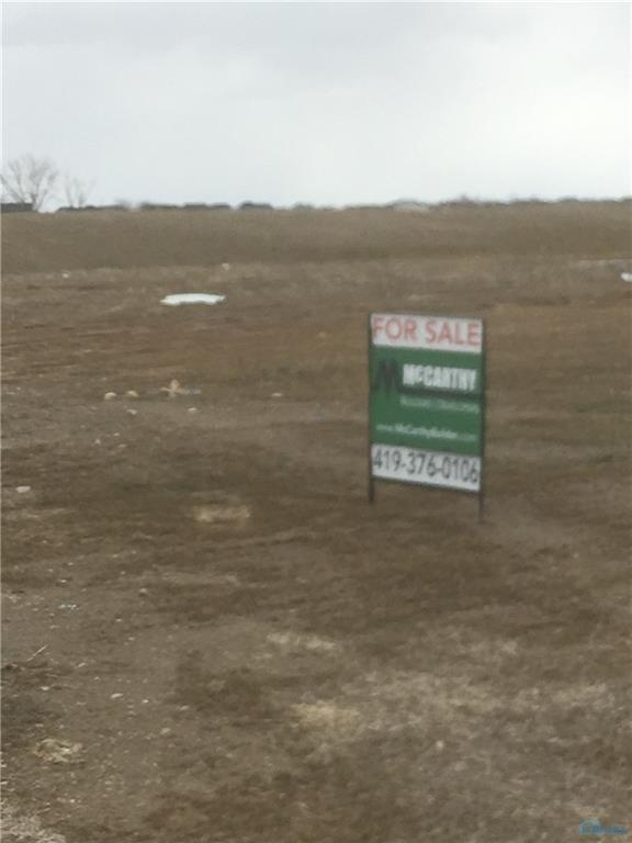 25264 John F Mccarthy Lot 151, Perrysburg, OH 43551 (MLS #6031710) :: Key Realty