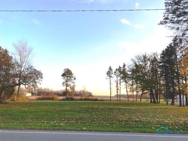 9860 State Route 249, Farmer, OH 43520 (MLS #6047471) :: The Kinder Team